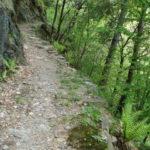 Monte Ceneri v. storica
